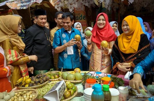 Plt. Gubernur Promosikan Potensi Budaya dan Wisata Aceh