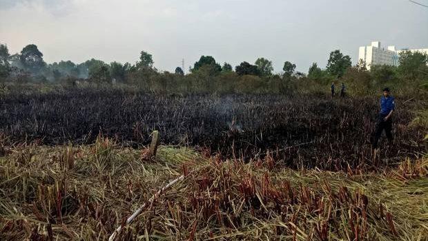 Lahan Kosong Dekat Wisma Atlet di Palembang Terbakar