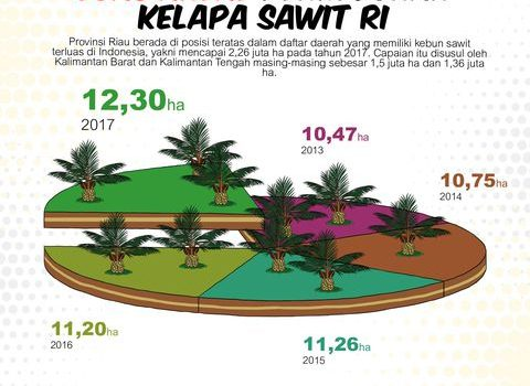 Luas Areal Perkebunan Kelapa Sawit 2017 Diperkirakan Mencapai 12,30 Juta Hektar (ha)