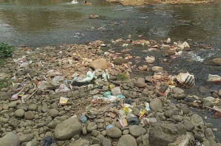 Riset Buktikan, Sungai Ciliwung Termasuk Sungai Terkotor di Dunia