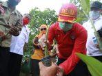 Antisipasi 'Megathrust', Kemensos Siapkan 1 Juta Bibit Mangrove